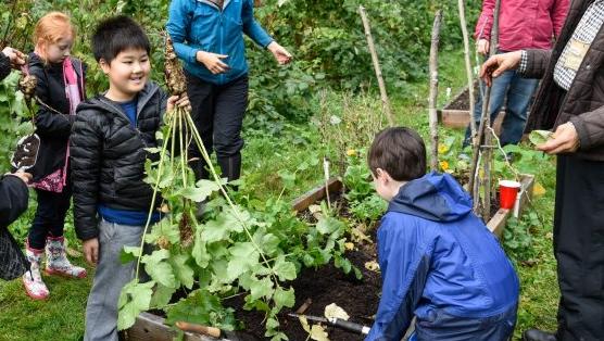 intergenerational gardening at UBC