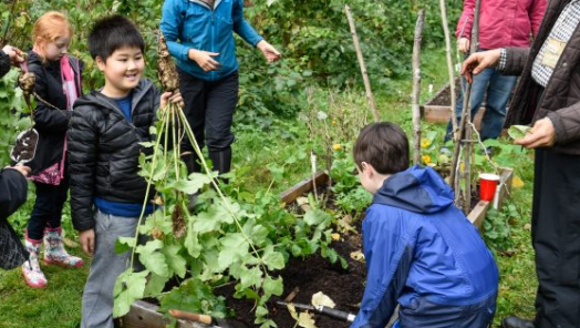 intergenerational gardening at UBC
