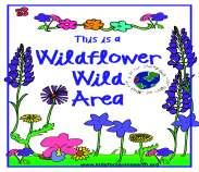WildFlowerWild
